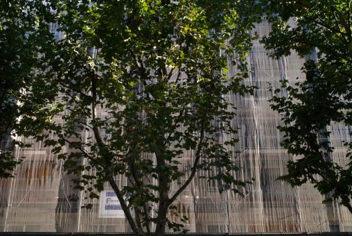 Derrière des arbres, la façade de l'immeuble disparaît derrière les filets et l'échafaudage. Paris, octobre 2009.