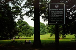 Dans un parc, à l'entrée d'une clairière de gazon encerclée par de grands arbres, des instructions précises pour faire des barbecues. New York, juin 2003.