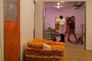 Deux hommes dans un entrepôt, parmi des sacs d'oignons, des cartons d'endives ou de bananes et un transpalette. Rungis, mars 2009.