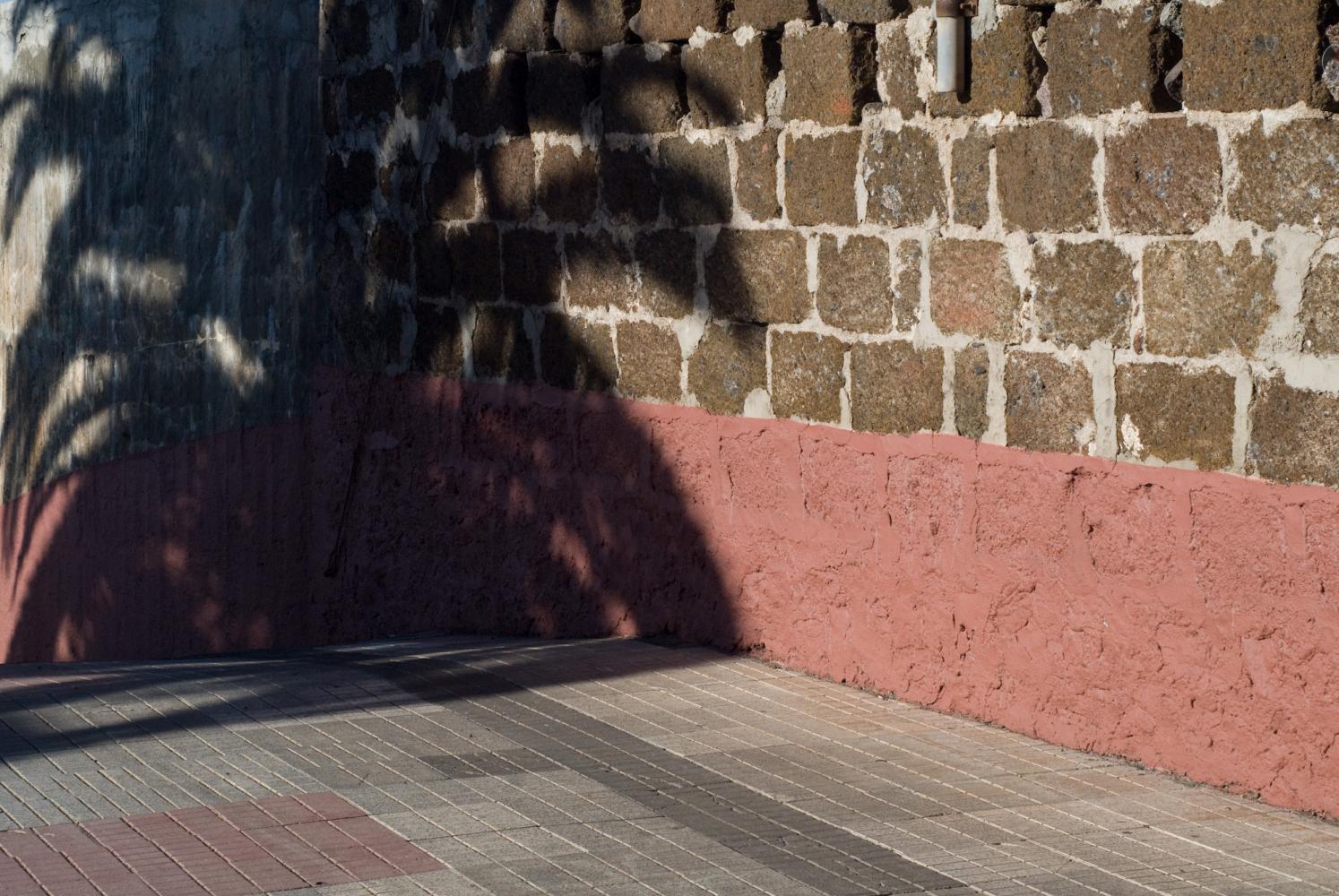 Ombre d'un palmier sur l'angle un mur dont le bas est peint en rose. Puerto de la Cruz. Ténérife, Canaries, janvier 2010.